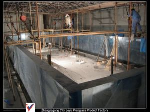 PMMA Panels Acrylic Swimming Pool pictures & photos