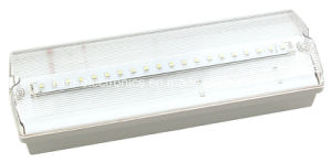 Ni-CD Battery Operated UL T5 Fluorescent Tube Bulkhead Emergency Light pictures & photos