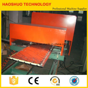 PU Sandwich Panel Forming Machine pictures & photos