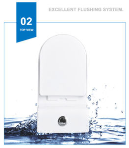 Weidansi Ceramic Wash Down S-Trap One Piece Toilet (WDS-T6111) pictures & photos