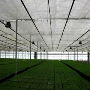 Multi Span Greece Material Plastic Film Horticultural Greenhouse with Factory Price pictures & photos
