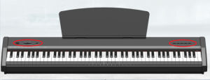 Chloris 88 Keys Electric Piano Keyboard pictures & photos