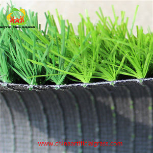 Comfortable Artificial Turf for Soccer Two Tones pictures & photos