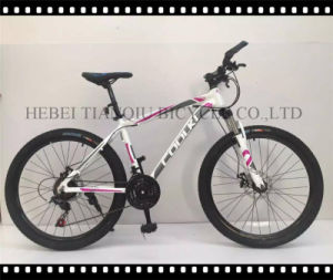 "Steel/Alloy Ce Approved 24""-28"" Mountain Bike, MTB pictures & photos"