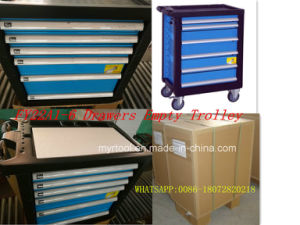 6 Drawers Blue Color Heavy Duty Empty Trolley (FY06A1) pictures & photos