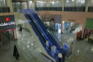 Indoor PLC Vvvf Escalator with Competitive Price