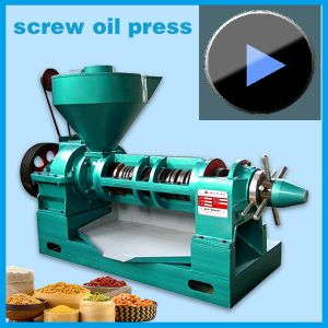 Spiral Oil Press Machine Yzyx130gx up to 10tons pictures & photos