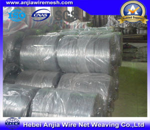 Hot Dipped Galvanized Straight Cut Wire for Building Materials with SGS pictures & photos