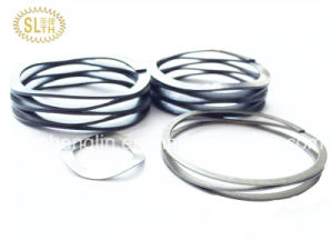 Slth Wave Spring Stainless Steel with Best Price pictures & photos