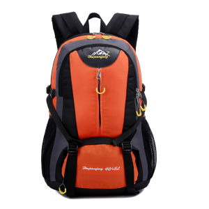 Made in China Cheap Fashion Ski Backpack pictures & photos