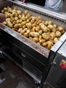 Potatoes Washing Machine, Peeling Machine, Beet Washer, Peeler Mstp-500 pictures & photos