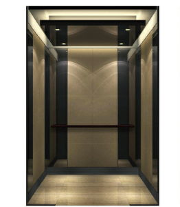 Commercial Building Elevator / Lift with Black Stainless pictures & photos