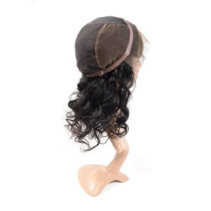 Human Hair Wig Brazilian Full Lace Wig pictures & photos