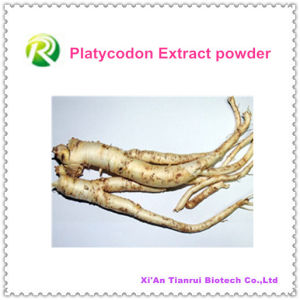 High Quality 100% Natural Platycodon Extract Powder pictures & photos