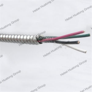 UL 1569 Thhn Inner or Xhhw Conductor Mc/AC/Bx Cable pictures & photos