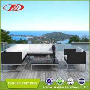 2013 New Design Rattan Sofa (DH-8831) pictures & photos