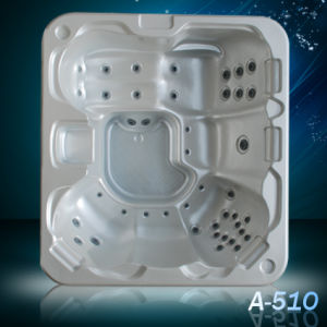 SPA Control Panel Dog Bathtubs Bathing Tub (A510) pictures & photos
