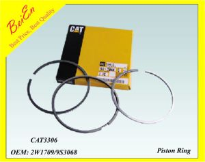 Cater Piston Ring for Excavator Engine Cat3306 pictures & photos