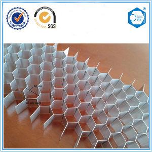 Suzhou Beecore Building Material Aluminum Honeycomb Core pictures & photos