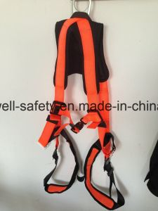 Seat Belt with One-Point Fixed Mode and EVA Protection Pad (EW0112H) pictures & photos