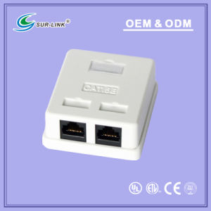 Cat5e 2 Port RJ45 Mount Box pictures & photos
