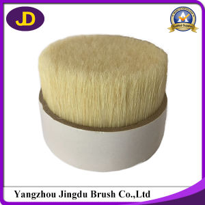 Bleached Chungking White Boiled Bristle 90% Tops 51mm pictures & photos