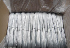 Electro Galvanized Low Carbon Straight Cut Wire pictures & photos