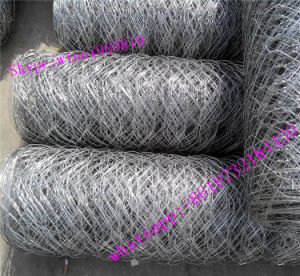 Yaqi Factory Supply Hexagonal Wire Netting with Competitive Price pictures & photos
