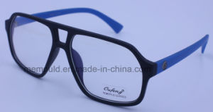 Sunglasses / Optical Glasses Mould for Frame and Temples pictures & photos