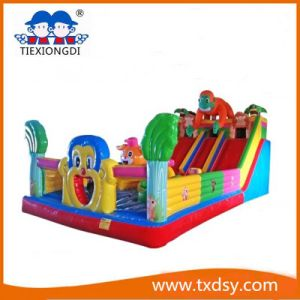 Funny Bouncy Castle, Amusement Equipment Inflatable Castle Txd16-212467 pictures & photos