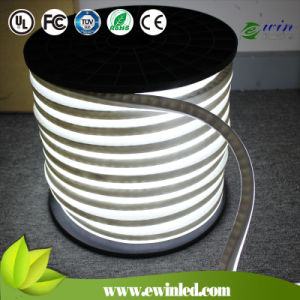 DC24V CE RoHS Hot Sale Mini LED Neon pictures & photos