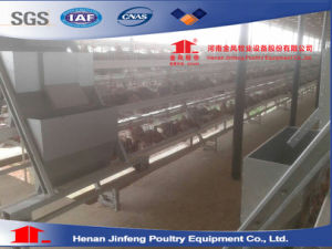 Automated Poultry Farm Chicken Cage (Poultry Equipment) pictures & photos