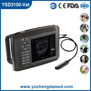 Ysd3100-Vet Ce Approved Palmtop Digital Ultrasound pictures & photos