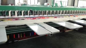 Chenille Embroidery Machine for Garment with Good Quality for Working pictures & photos