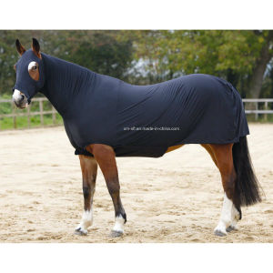 Hooded Lycra Horse Sheet for Sale