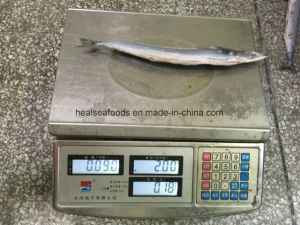 Frozen Saury Factory Price From China pictures & photos