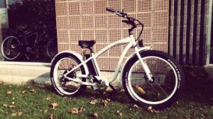 2017 Luxury Beach Cruiser Type Fat Tire Electric Bicycle En15194 pictures & photos