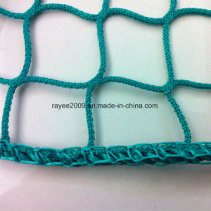 Virgin Agricultural Nylon UV Treated Anti Bird Net pictures & photos
