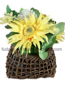 Beautiful Willow Handmade Garden Pot pictures & photos