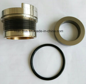 Tk 22-1101 Shaft Seal Metal Bronze Original China Supplier pictures & photos