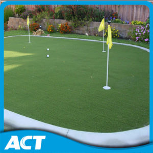 Portable Mini Golf Lawn Artificial Grass for Golf Court G13 pictures & photos