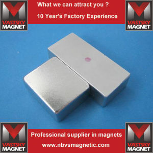 NdFeB Neodymium Permanent Magnet for Motor Kit Loudspeaker Electric Machine pictures & photos