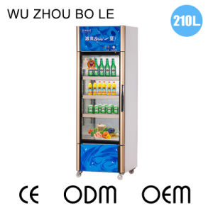 210L Vertical Opening Single Door Showcase with LED Light pictures & photos