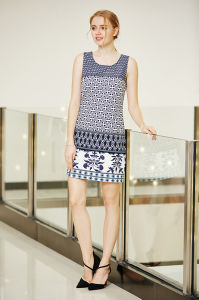 Round Neck Sleeveless Summer Ponte Dress with Border Printing in Multi Patterns pictures & photos
