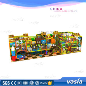 Shopping Mall Kids Cars Wooden Jungle Gym Slides Playground pictures & photos