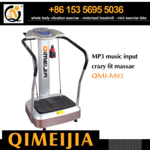 Most Popular MP3 Music Crazy Fitness Massager pictures & photos