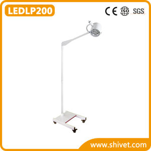 Veterinary Cold Light (LEDLP200) pictures & photos