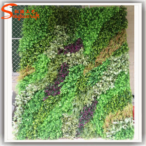 Hot Sale Evergreen Grass Wall for Decoration pictures & photos