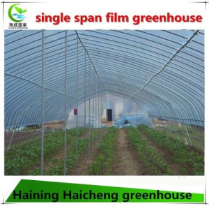 Cheap Tunnel Greenhouse for Agriculture pictures & photos