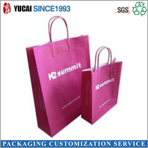 Muti-Color Printed Kraft Paper Bag Shopping Bag pictures & photos